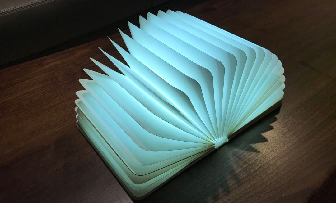 Veesee 8-Color Book Lamp