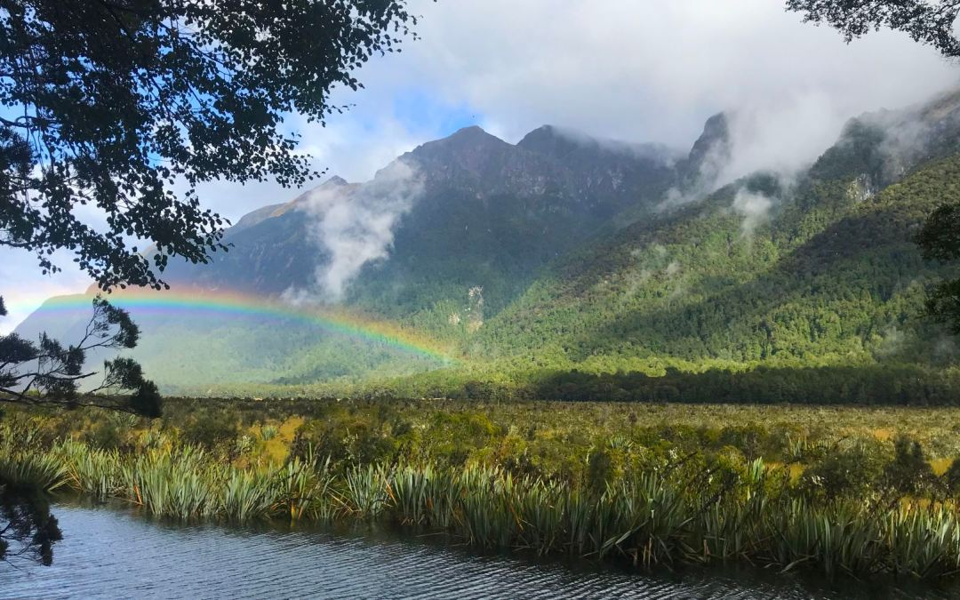 Our New Zealand REI Hiking and Kayaking Adventure