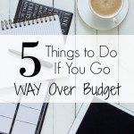 5 Things To Do When You Go WAY Over Budget