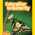 Amazon: Caterpillar to Butterfly Nat Geo Kids Book only $1.69!