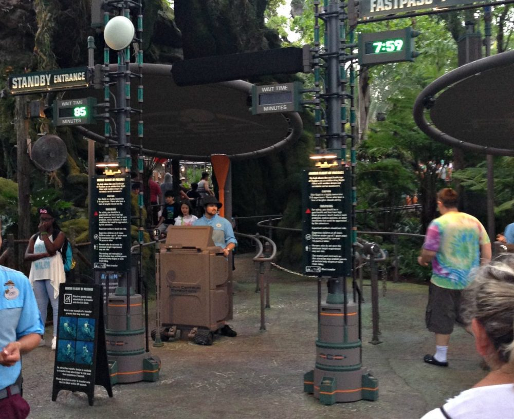 Entrance to Flight of Passage with an 85-minute wait at 8 pm
