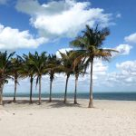 Budget Friendly South Florida With Kids: Miami, Everglades, & Key Largo!