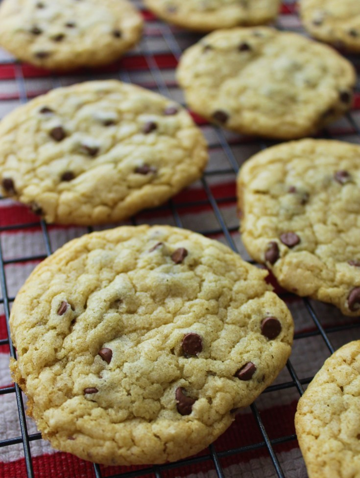 Easy No Butter Chocolate Chip Cookies Recipe