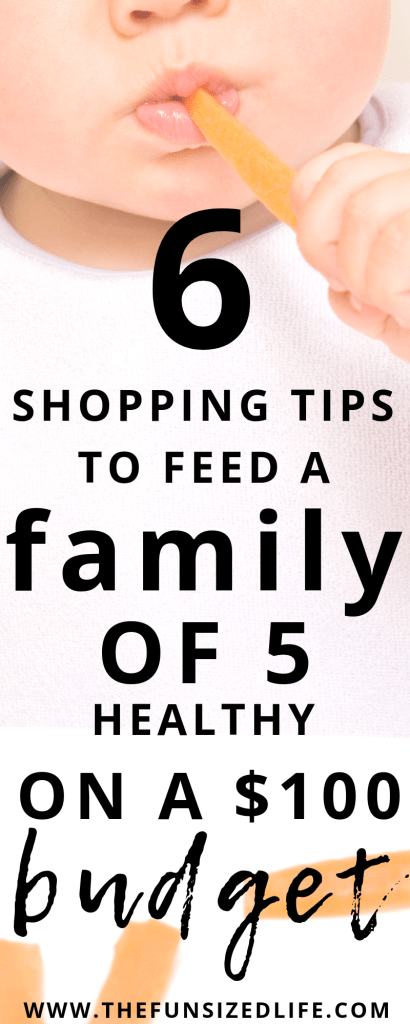 These are must use healthy food shopping tips when you need to stick to a budget for your family.