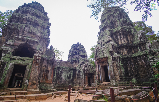 The last section of Ta Prohm.
