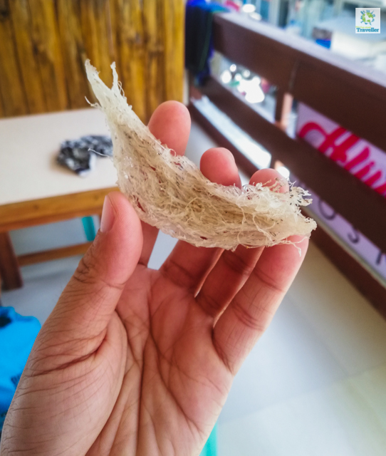 The dried saliva of Balinsasayaw birds that make up their nest.