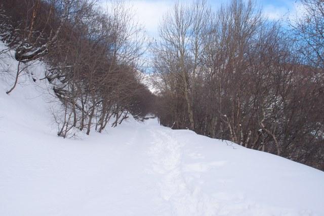 All snow