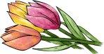 Springtime pictionary word list
