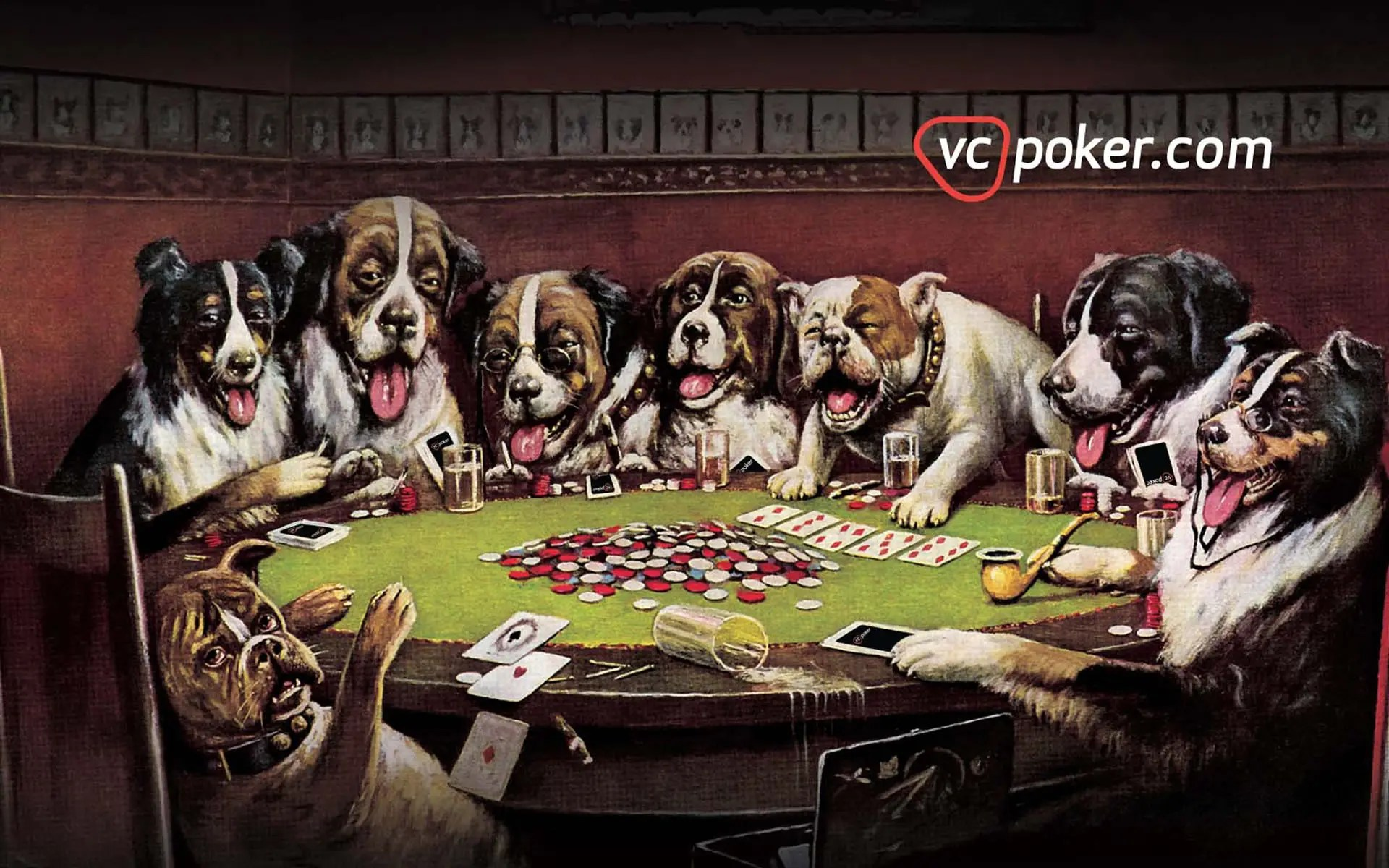 A Girl Wallpaper Hd Poker Wallpaper Free Poker Wallpapers For Your Pc