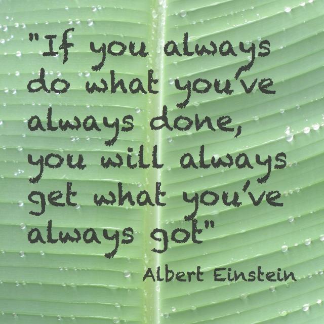 plan my gap year experiences: Einstein quote