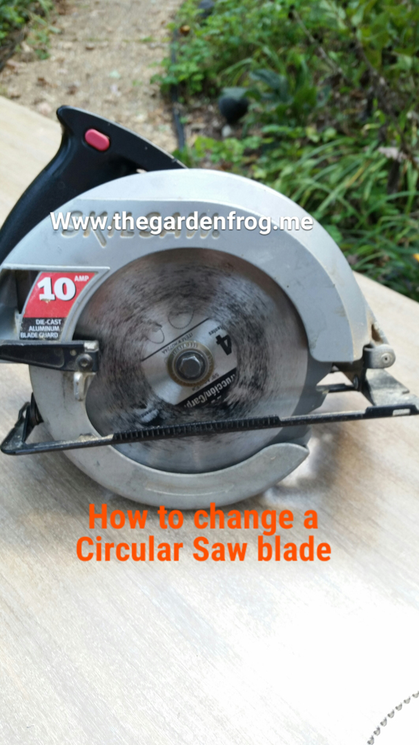 How to change a circular saw blade the garden frog boutique for the beginner diyer who is too afraid of asking here is an easy tutorial on changing a circular saw blade on a skilsaw i looked this up on the internet keyboard keysfo Images