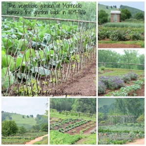 My Visit to Thomas Jefferson's Monticello