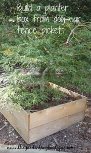 Build a planter box from dog-ear fence pickets