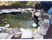 How to Build a Pond Easily, Cheaply and Beautifully | The ...