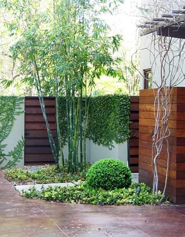 privacy diy garden