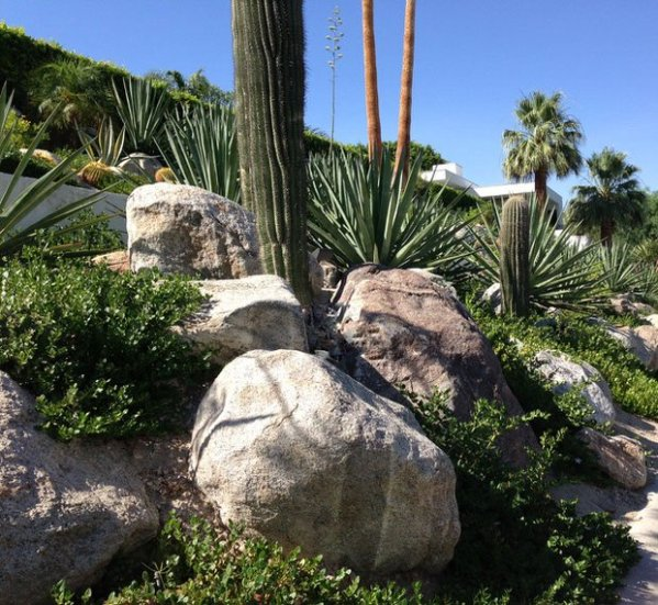 palm springs lessons in texture