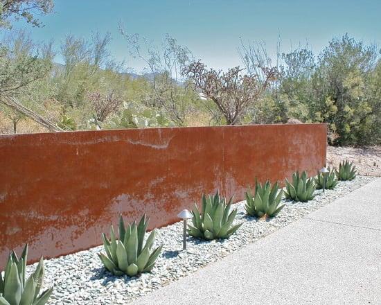 modern trends cactus garden ideas
