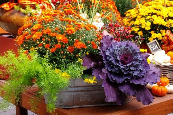 fall container wow in 3 easy steps