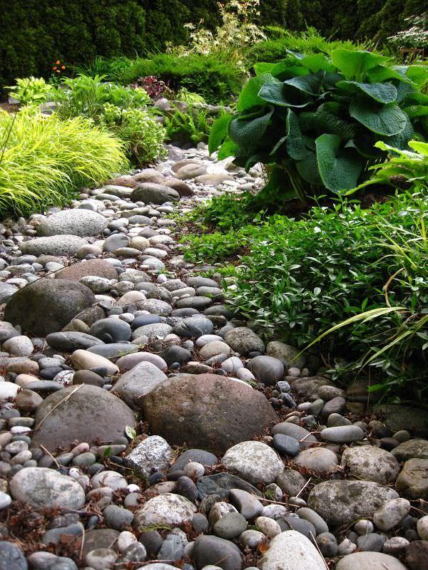 diy dry creek beds garden
