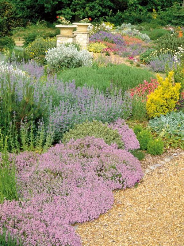 great groundcovers garden