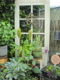 NOVEL GARDEN DECOR FROM OLD WINDOWS AND DOORS | Garden ...