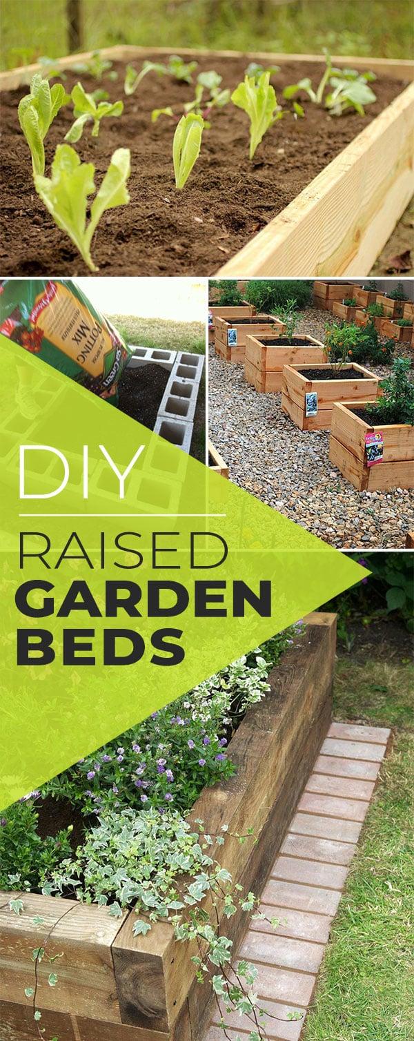 Above Ground Vegetable Garden Diy