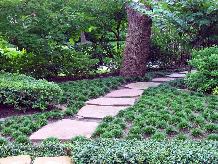 Alternatives to Grass  Front Yard Landscaping Ideas  The Garden Glove