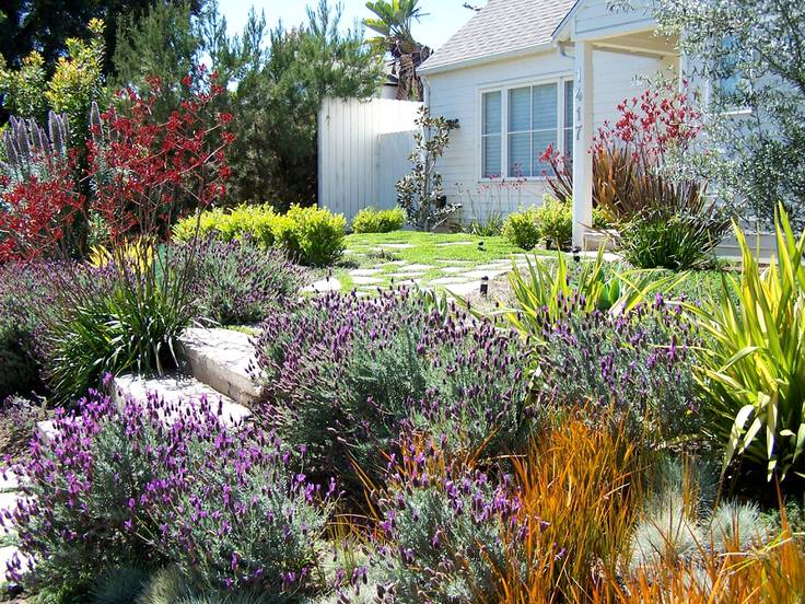 Alternatives to Grass  Front Yard Landscaping Ideas  The