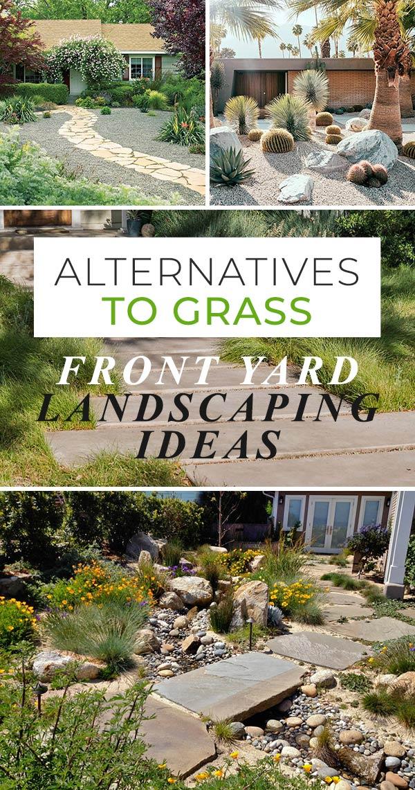 alternatives grass front yard