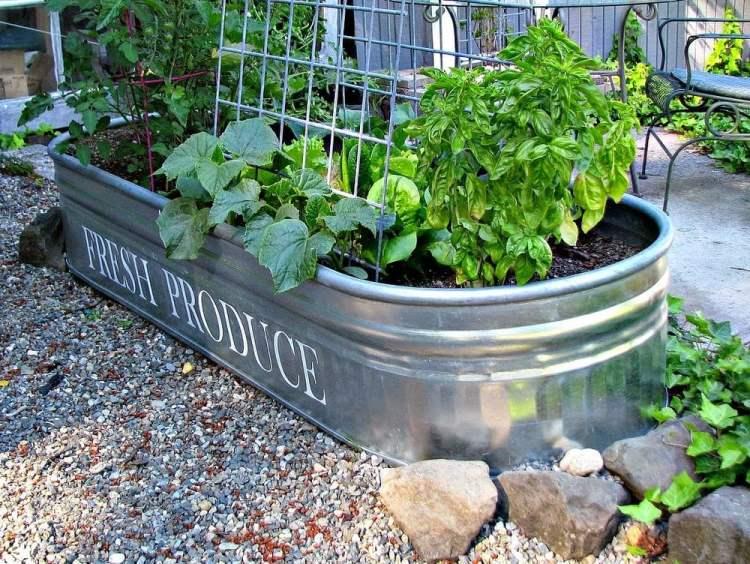 12 Brilliant Container Vegetable Gardening Ideas The Garden Glove