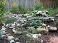 My Rock Garden - A Gardener's Forum