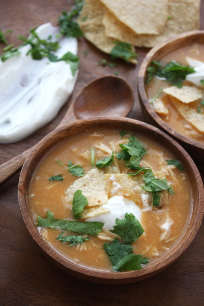 5 Ingredient Crock-Pot Enchilada Soup -- TheGarlicDiaries.com