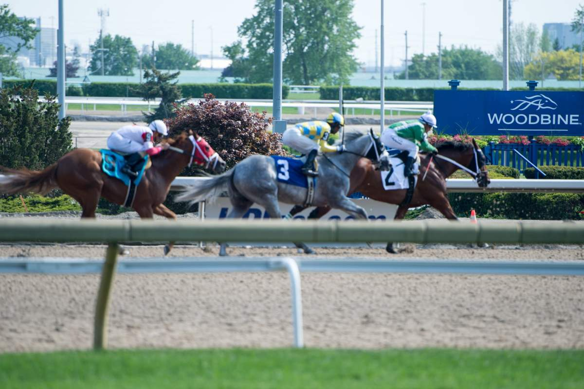 Greenwood Stakes