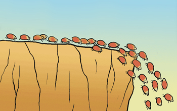 republicans cliff