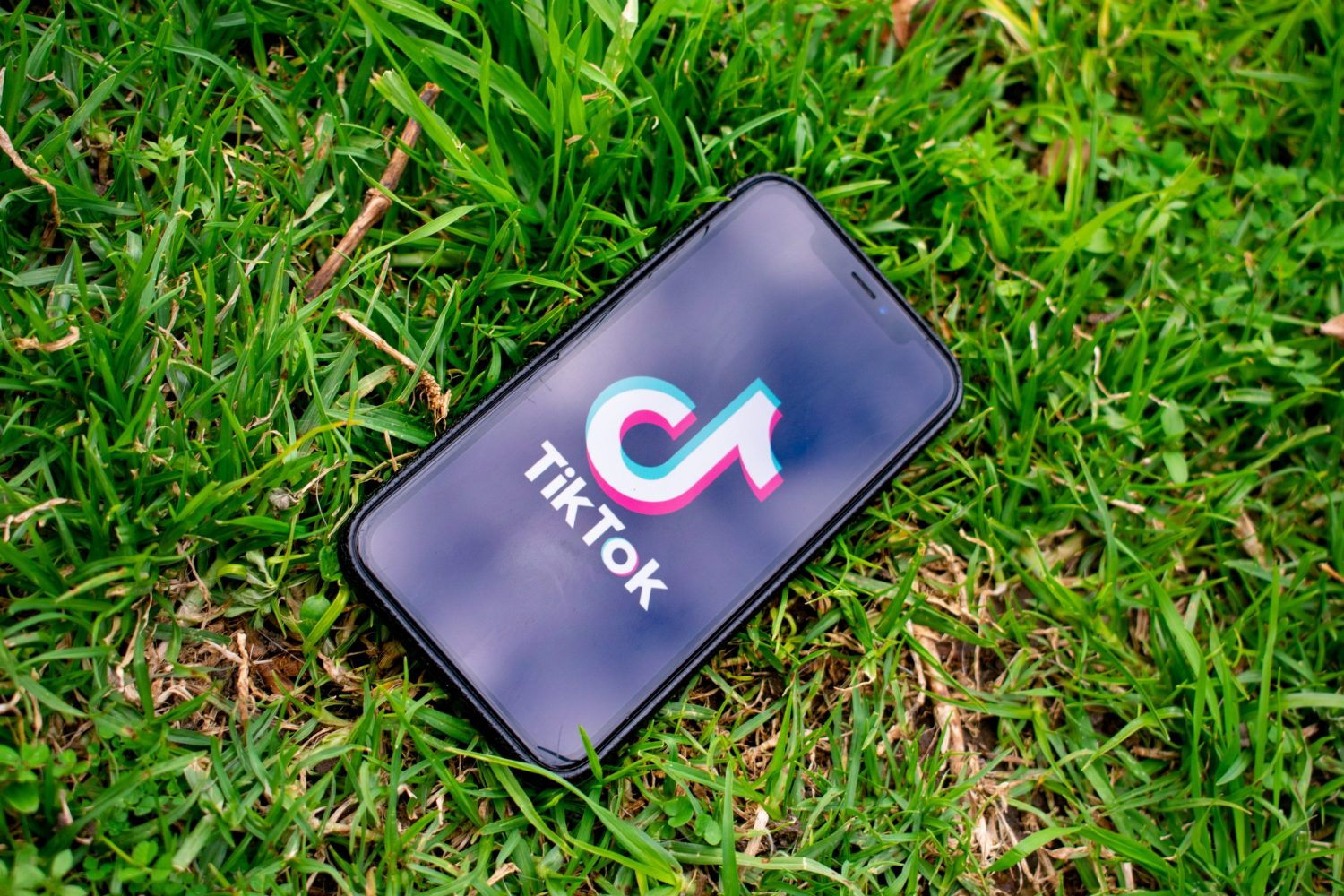 iPhone displaying the TikTok app