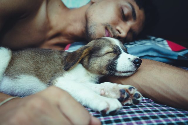 tiredness can cause erection problems. Make sure you're getting enough sleep.