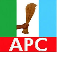 Ondo 2020: APC Clears 12 Aspirants For Primary Election [Full list]