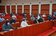 Senate Moves To Improve Nigeria's Power Generation Capacity