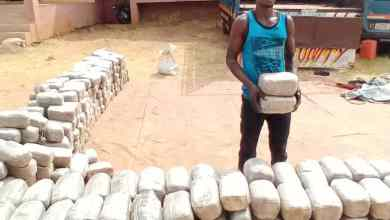 Photo of NDLEA Uncovers Another Cannabis Warehouse In Benue, Intercepts Truckload Of Illicit Drug + Video, Photo