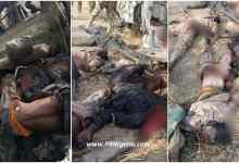 Photo of Troops Clear Corpses Of ISWAP Terrorists In Marte Communities + Photo