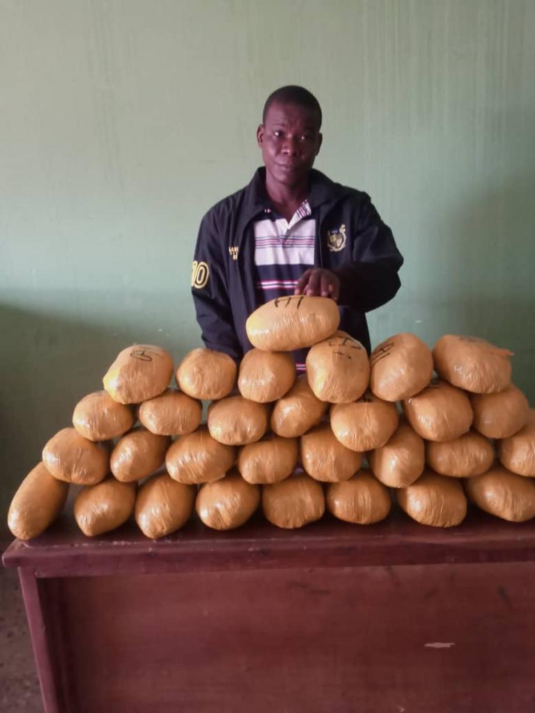 NDLEA Arrests 10 Online Drug Traffickers, Seizes 107kg Cocaine, Others, 11 Despatch Okadas, Car; Seizes Europe/UAE-bound Drugs