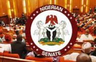 Insecurity: Nigeria To Deploy Robots, Artificial Intelligence To Fight Criminals – Senate