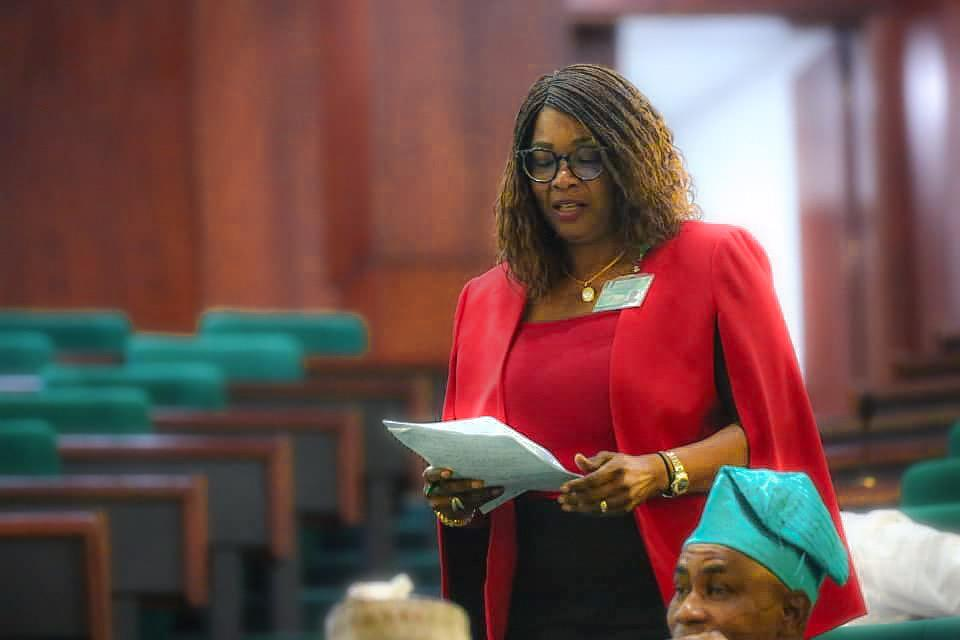 Rep Member Akande-Sadipe Seeks Justice For Hit & Run Accident Victim; Urges IGP To Probe Sanyo Police Station's Connivance With Drunk Driver