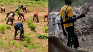 Farmers/Herders' Clash: Herders To Carry ID Card In Osun; State Begins Enumeration, Headcount Of Migrants, Immigrants