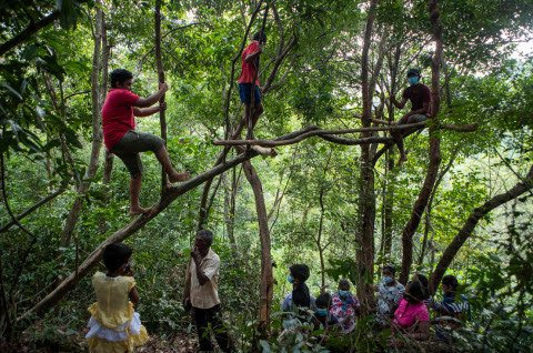 Pupils Trek Through Bushes, Sit On Tree Branches To Get Internet Access For Home Lessons