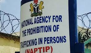 IOM, NAPTIP Launch Tools To Strengthen Identification, Screening, Reporting Of Trafficking Victims In Nigeria