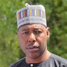 We Need United Decision On How To React To Repentant Boko Haram, Says Zulum