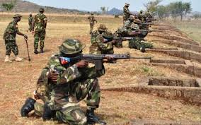 Stray Bullet at Military Formation in Borno Kills Soldier, Civilian