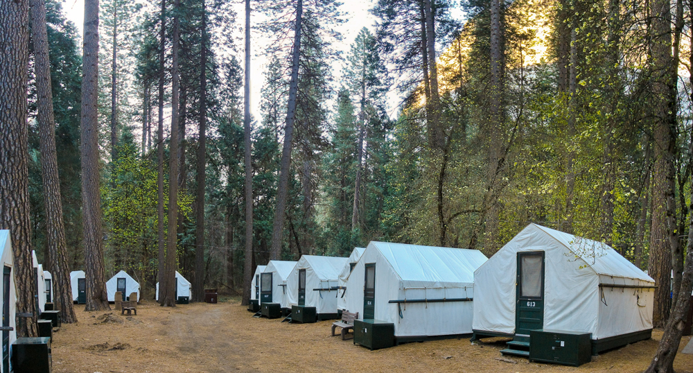 Bots Are Stealing Your Campsites And Permits
