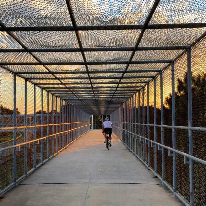 Pinellas Trail